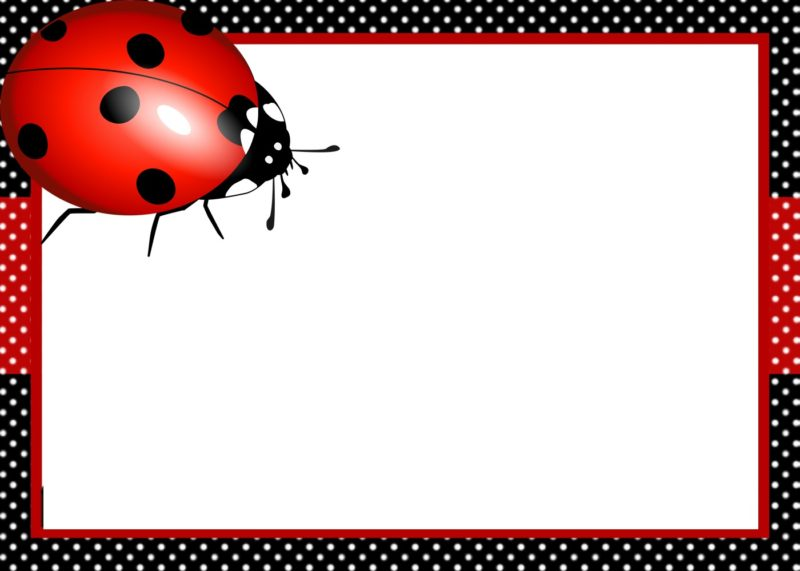 4 ways to creatively design ladybug birthday invitations ladybug invitation template solutioingenieria Choice Image